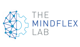 Mindflex Lab